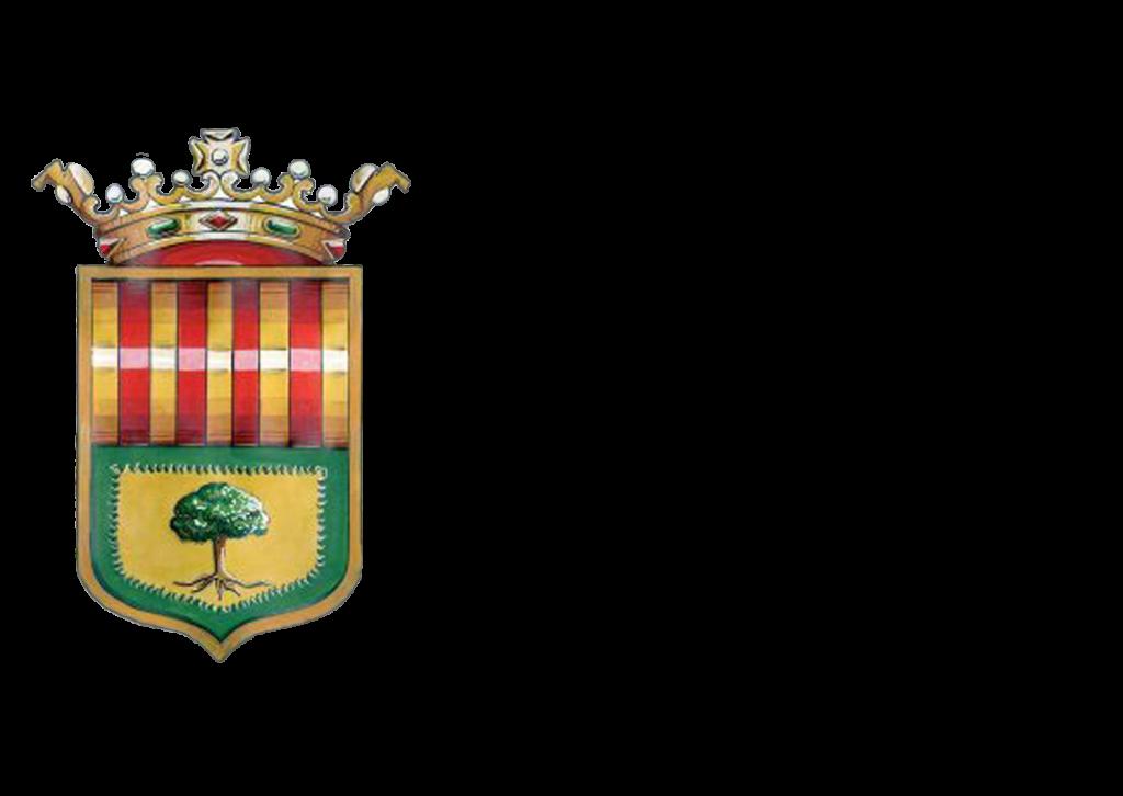 EN beneficio del proyecto RAMPA DIGITAL se entrega en Ayuntamiento Bonrepos i Miranbell los lotes del Sorteo ConSumo Valor